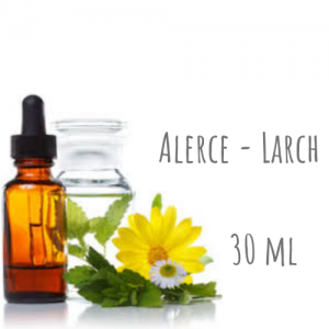Alerce - Larch 30ml