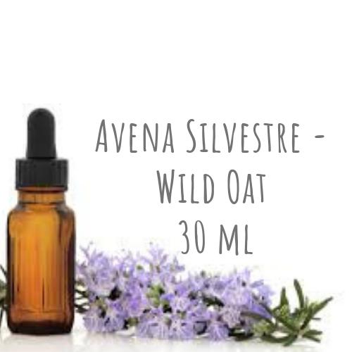 Avena Silvestre - Wild Oat 30ml