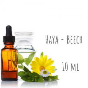 Haya - Beech 10ml
