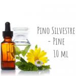Pino Silvestre - Pine 10ml