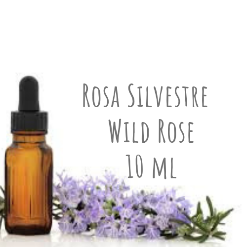 Rosa Silvestre - Wild Rose 10ml